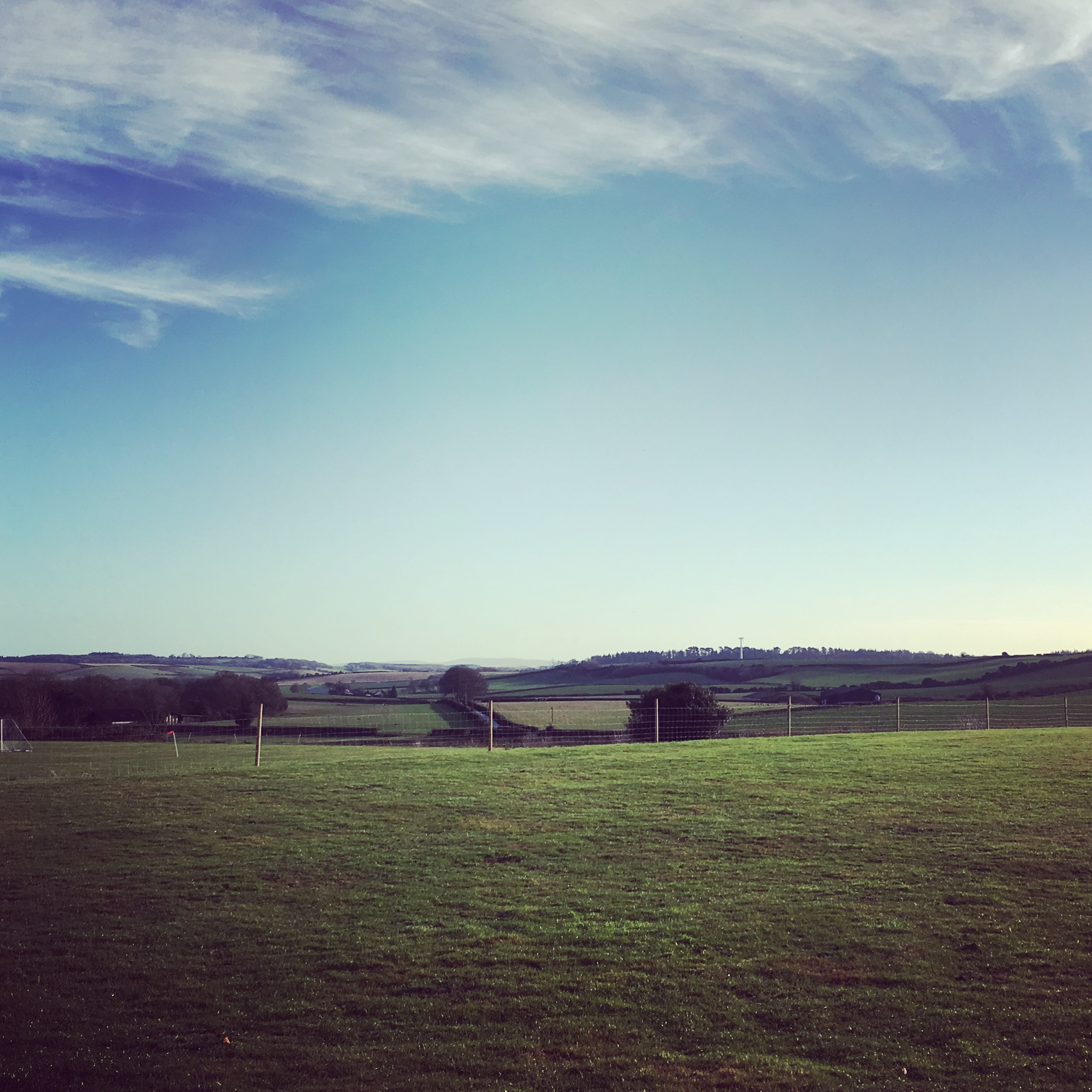 Yoga with a View at Milborne