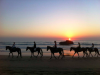 Horseriding in Morocco