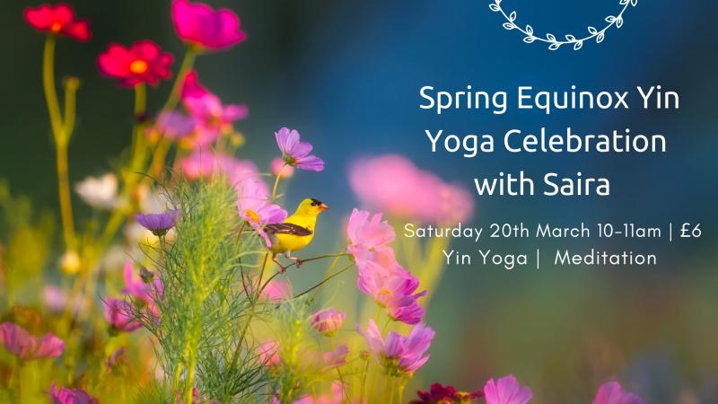 Spring Equinox Yoga